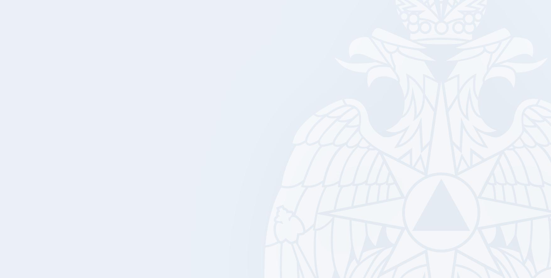 Пиротехники Донского спасцентра обезвредили авиабомбу