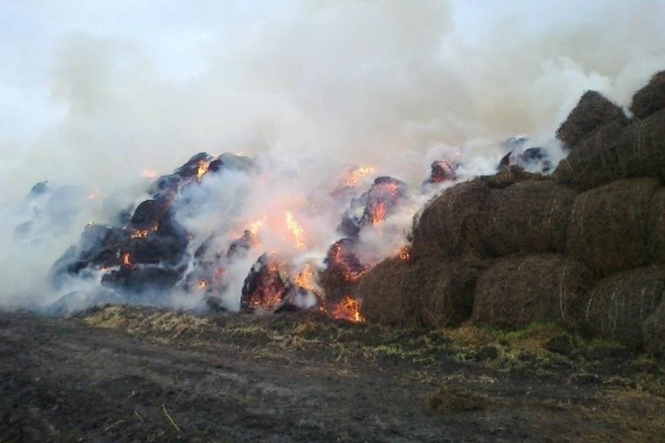 Возгорание сена в Морозовском районе